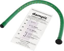 Dampit (for Violin)